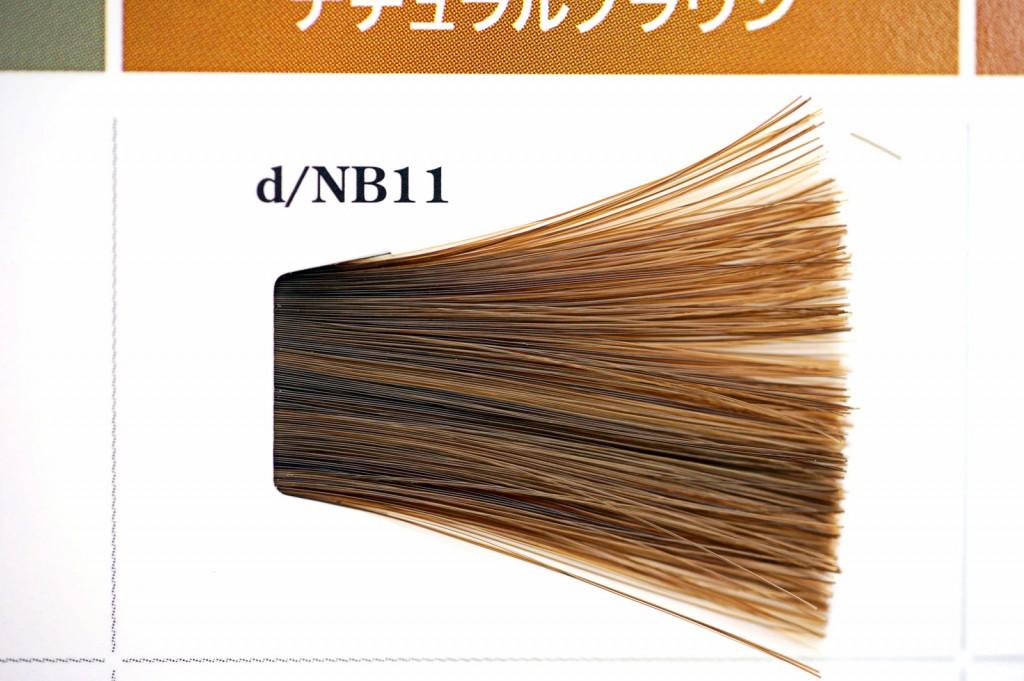 カラーチャート11番【タマリス】