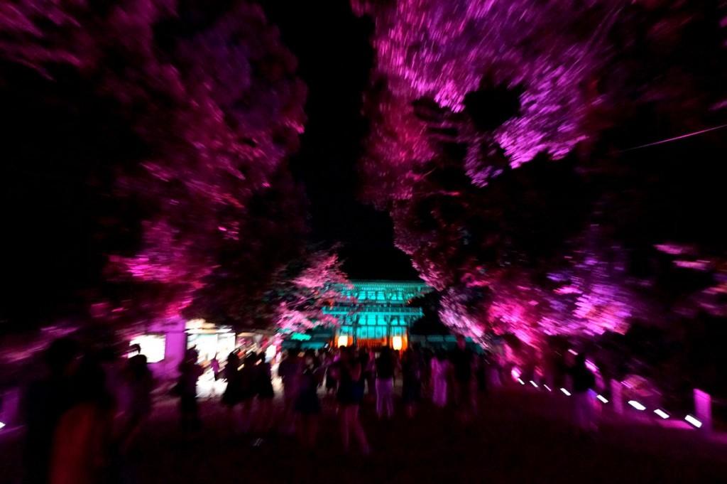 糺の森の光の祭14