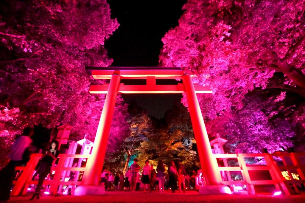 糺の森の光の祭13