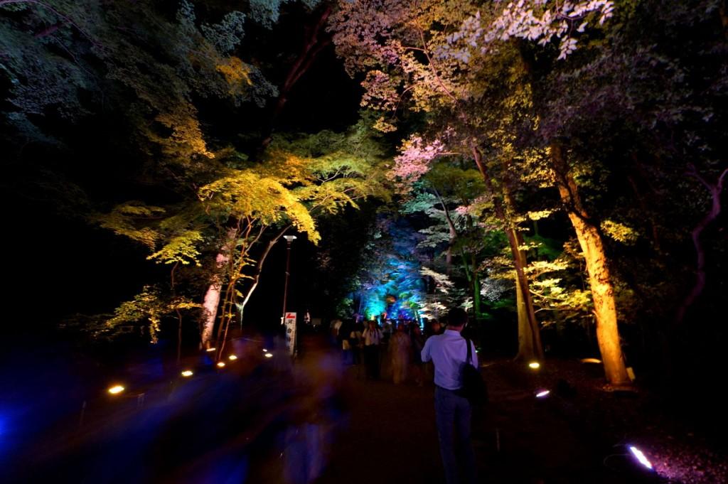糺の森の光の祭9