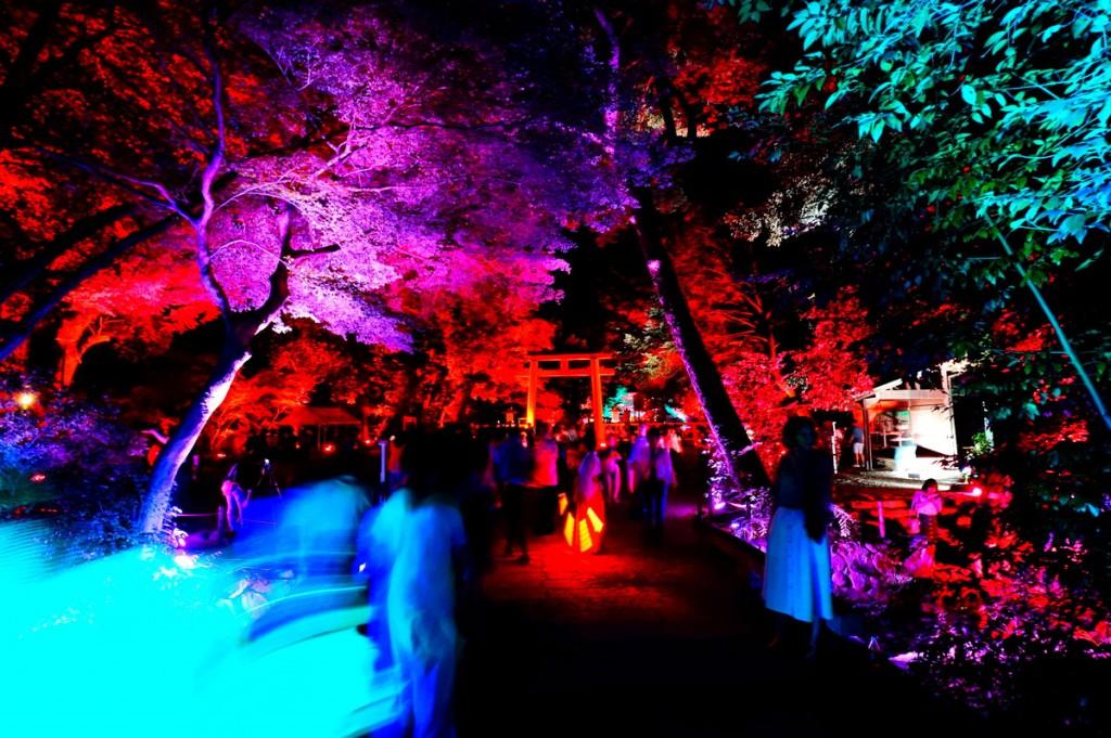 糺の森の光の祭6