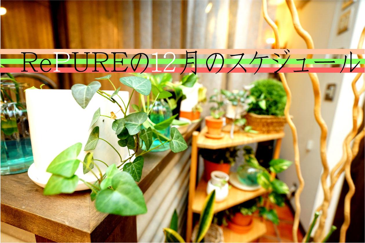 17年12月のサロンスケジュール【年末年始の営業】
