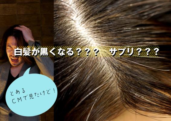 白髪が黒くなる?サプリ?毛根・毛幹の説明で髪の成長理解を高める!